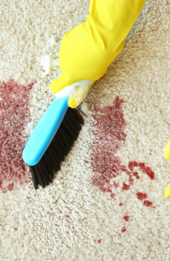 Carpet stains are ugly, slightly embarrassing, and completely awful to remove. Who knew those fuzzies under our feet were so dang absorbent? If you get blood on your carpet, try using your own saliva. It sounds weird, I know, but it removes carpet stains!