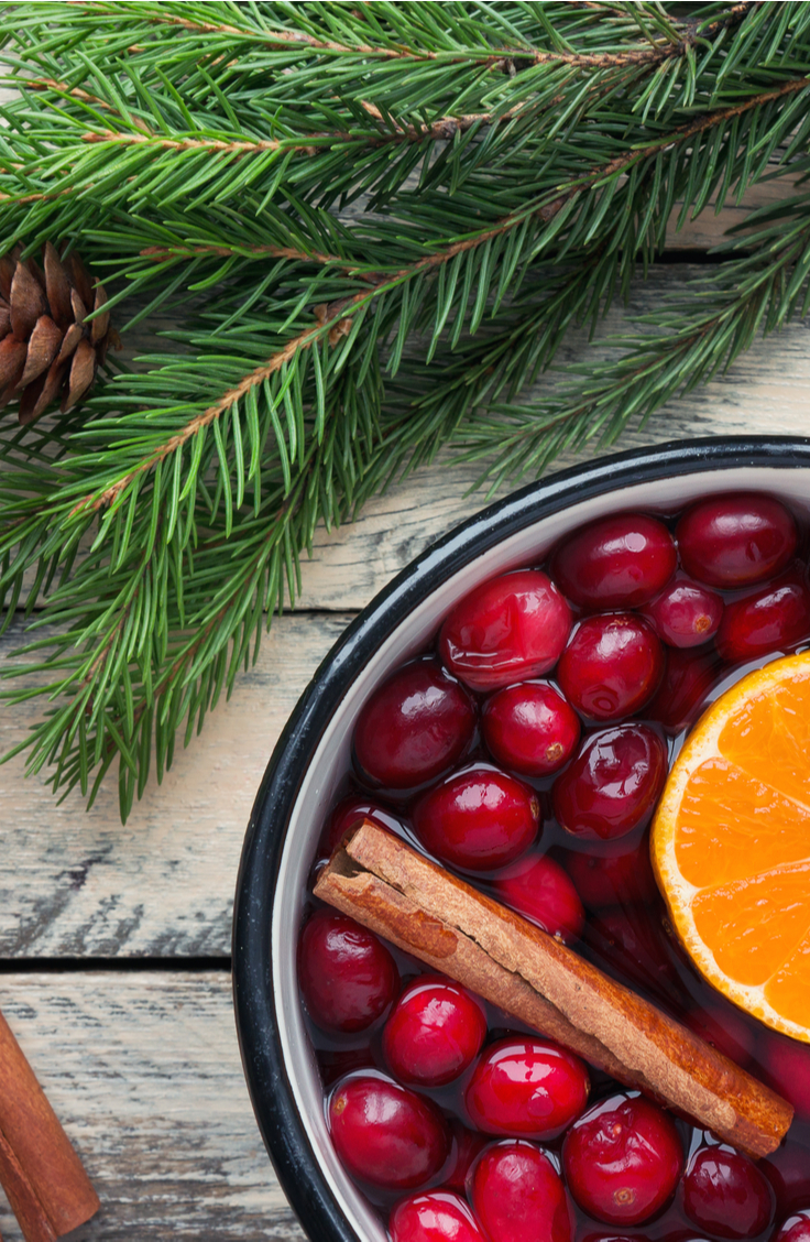 If you share my love of the scents, here are a few of my favorite DIY potpourri recipes. These are incredible because they'll make your home smell like Williams-Sonoma! This Christmas potpourri is something to die for!