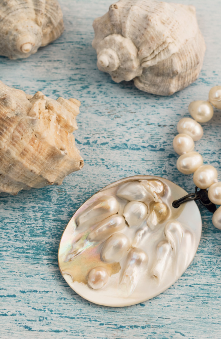 Collecting seashells is one of the best parts of going to the beach. If you're looking for clever ways to reuse those found seashells, check out this list of amazing things to do with seashells.