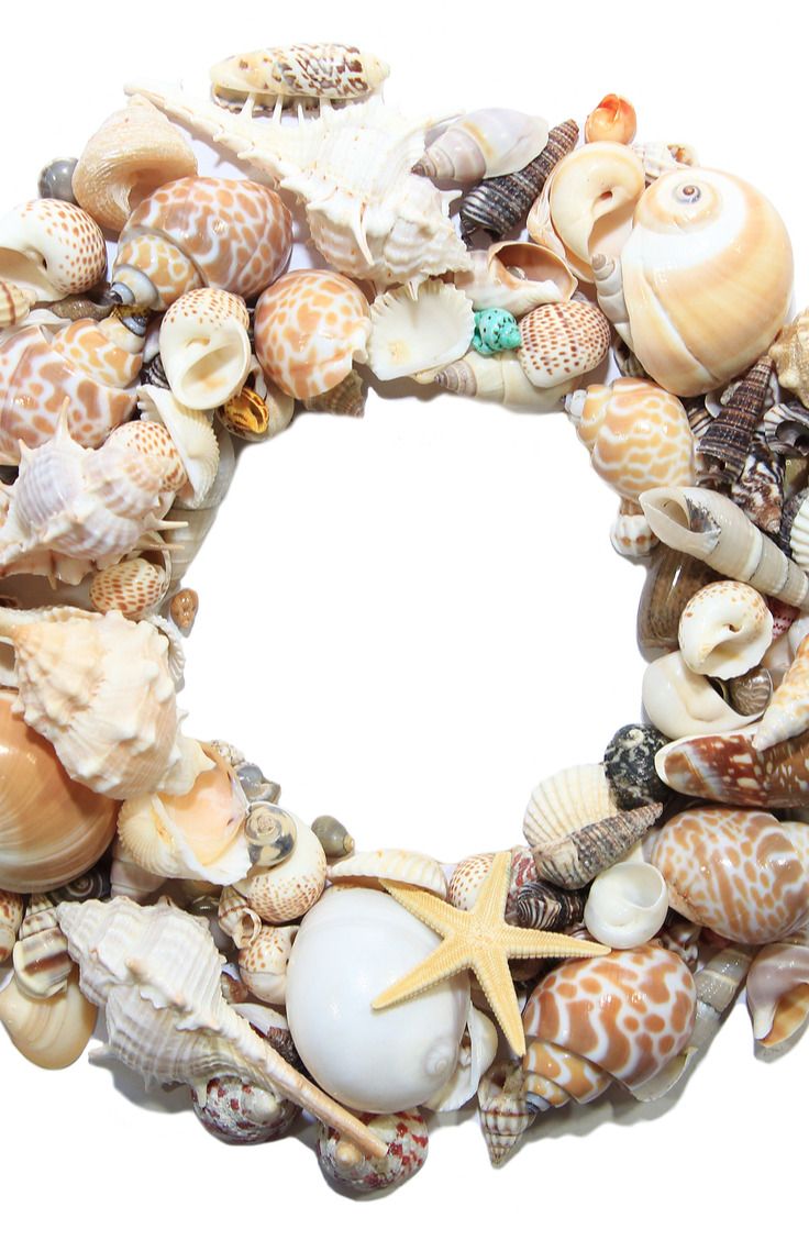 There are so many things you can make with seashells you find at the beach. If you're looking for clever ways to reuse those found seashells, check out this list of amazing things to do with seashells.
