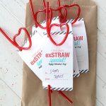 10 Dollar Store Valentines Day Gift Ideas| Valentines Day Gifts, Gift Ideas, Dollar Store, Dollar Store Gifts, Dollar Store Gift Ideas, Valentines Day DIY Gifts, Gifts, Gifts for Kids #DollarStore #DIYGifts