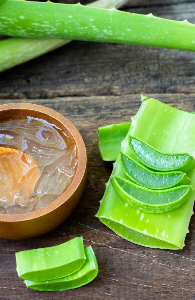 Make Your Own Aloe Vera Gel