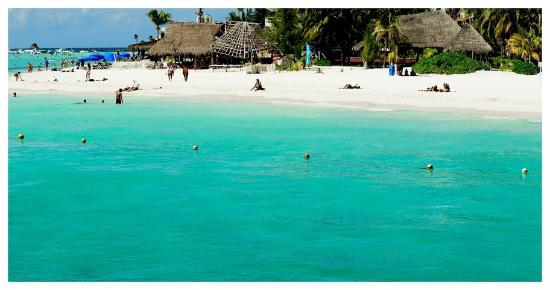 The BEST Beaches in Cancun - Sand Between My Piggies| Beach Vacation, Beach Vacation Destinations, Cancun, Cancun Mexico, Cancun Mexico Things to Do, Travel, Traveling Hacks, Travel Destinations