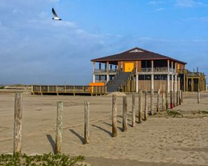 Here is a guide to Galveston beaches! Find the perfect beach destination for your next vacation! There are beaches for a variety of interests! Don't miss out on the perfect Galveston beach day! Take a look.