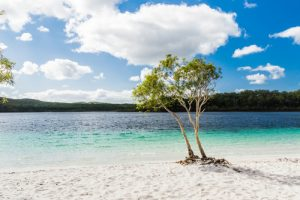 Fraser Island-Queensland