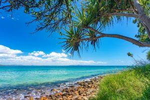 A beach in the wet tropics of Queensland