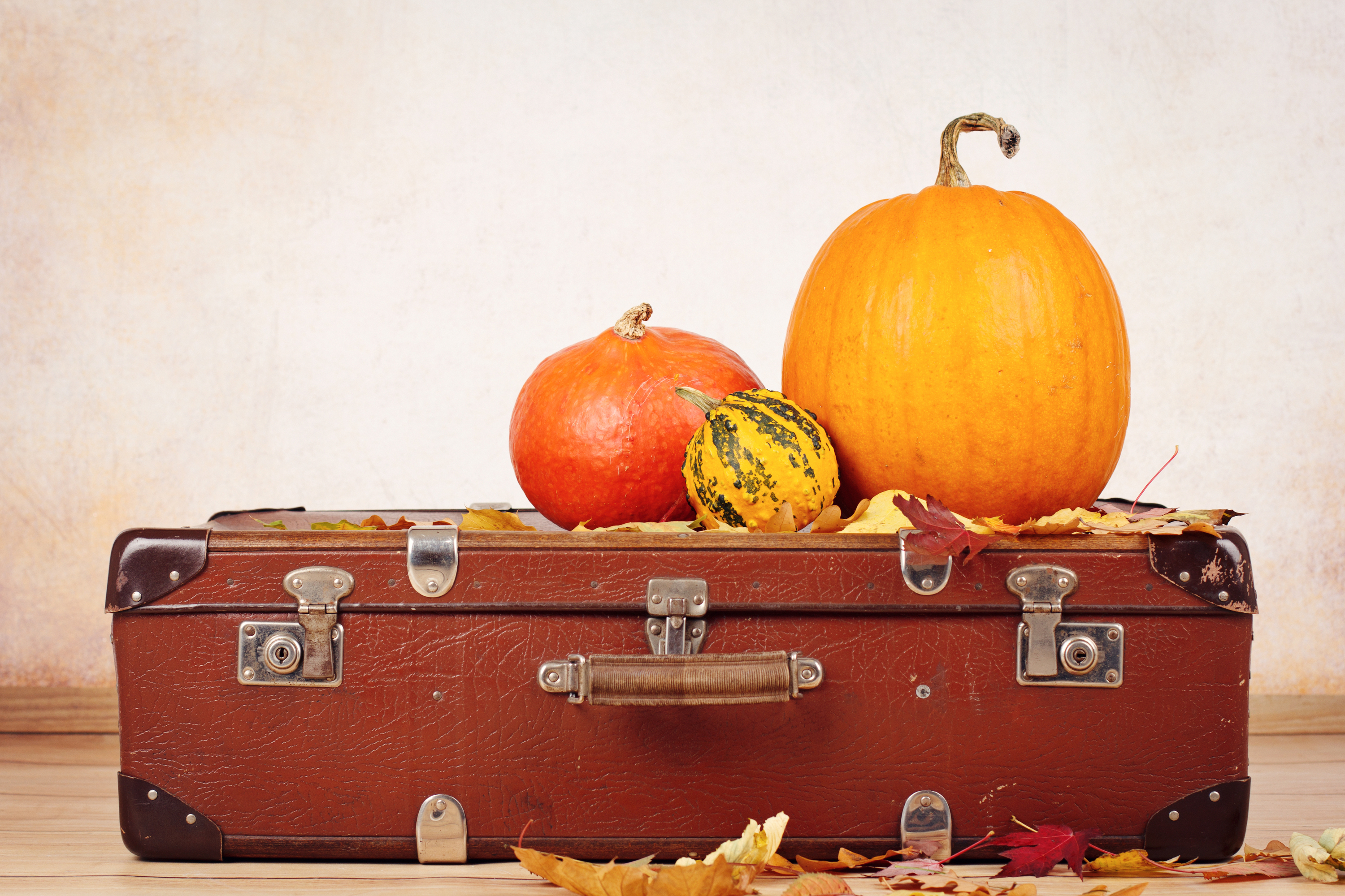 The holidays can be a stressful time for traveling. These Thanksgiving travel tips will help you with the stress of traveling.