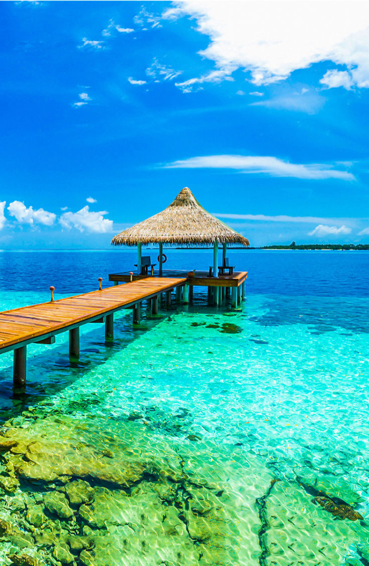 Traveling is the best. You get to go to new places and learn new things, who doesn't like that? If you're planning a trip this year, take a look at this list of dream vacations. Why not check out the Maldives?