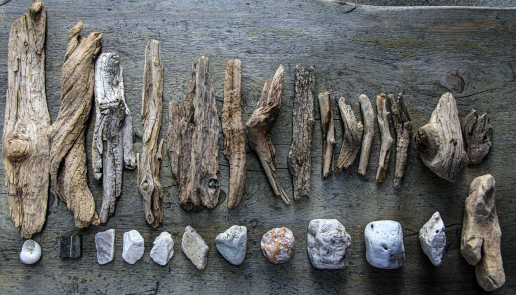 Get driftwood in many shapes and sizes
